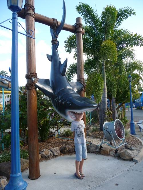 Sharkbait!