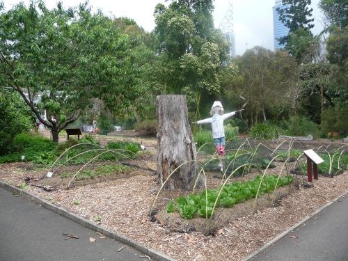 Australia's oldest vegie garden?