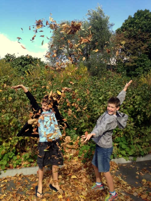Fun with Autumn leaves